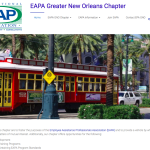 professional association web site design, New Orleans