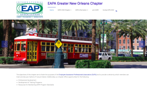 professional association web site design, New Orleans
